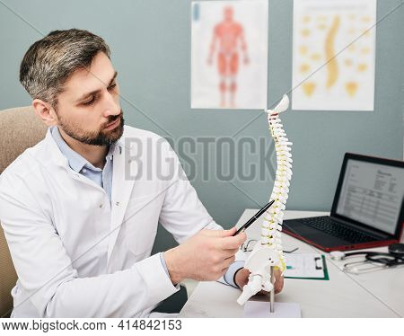Treatment Of Intervertebral Hernia. Mature Physiotherapist Using Spine Anatomical Model To Analyze H