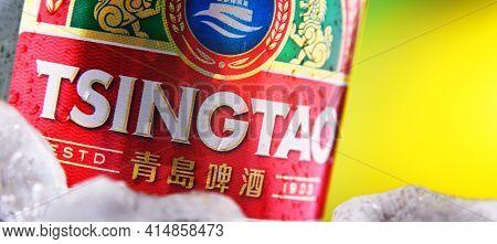 Bottle Of Tsingtao Beer In Crushed Ice