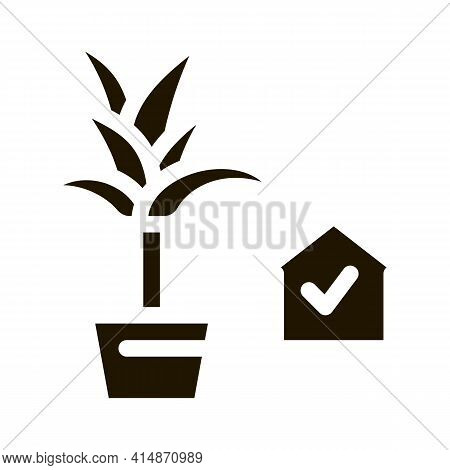 Domestic Potting Flower Glyph Icon Vector. Domestic Potting Flower Sign. Isolated Symbol Illustratio