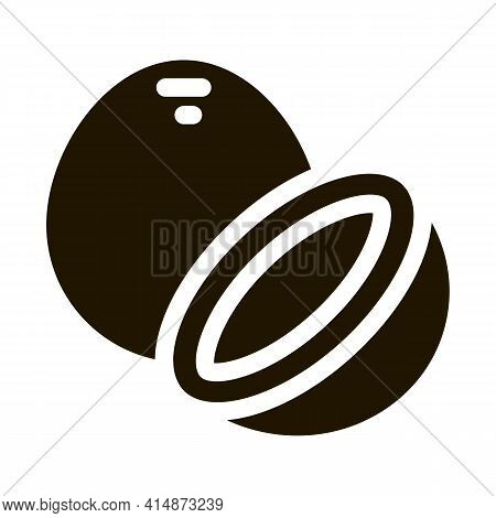 Coconut Nut Glyph Icon Vector. Coconut Nut Sign. Isolated Symbol Illustration