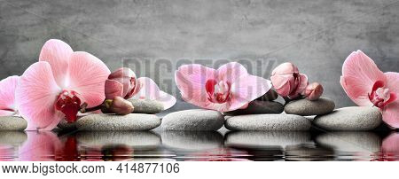 Set Of Pink Orchid And Gray Spa Stones On Water And Reflection. Spa Concept.
