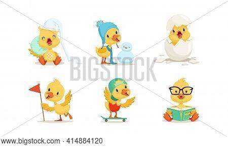Cute Chicken Character Different Activities Set, Adorable Little Bird Making, Snowman, Skateboarding