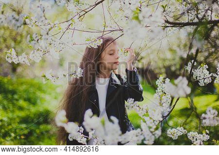 Little Girl In Black Jacket Sniffing Flowers In Spring Cherry Garden. Portrait Of Happy Child Among