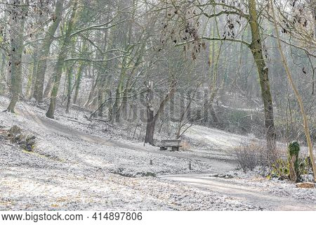 Winter Landscape In A Dutch Forest With A Snow Covered Hill With Bare Trees, A Wooden Bench Next To
