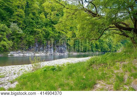 River Flow Under The Rock. Beautiful Nature Landscape In Spring. Deciduous Trees On The Shore