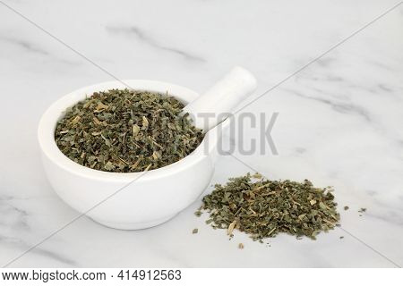 Avens herb leaves in a mortar with pestle used in herbal medicine to treat rheumatism, gout, arthritis, diarrhea, fever, halitosis, mouth ulcers and heart disease. Geum urbanum.