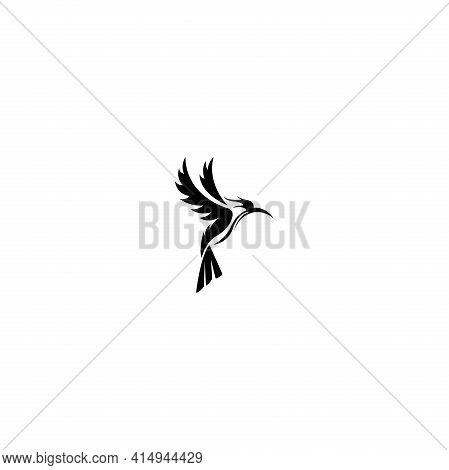 Flying Colibri Logo. For Business  Education And Natural Company Logos