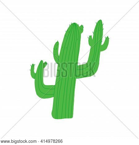 Cute Cartoon Cactus. Traditional Mexico Or Southern Usa States Like Arizona, Texas And Other Hot Cli