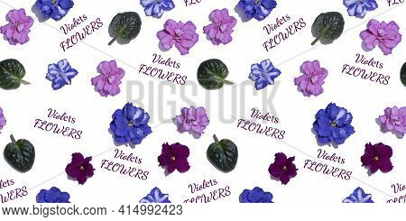 Seamless Pattern With Pink And Blue Violet Flowers. Viola Heads Isolated On White Background. Letter