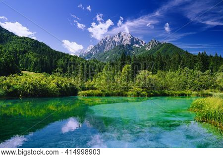 Green Nature Landscape. Amazing View On Zelenci (into English Means - Green) Nature Reserve And Alps