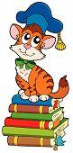 Cat teacher on pile of books - vector illustration. poster
