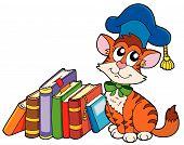 Cat teacher with various books - vector illustration. poster