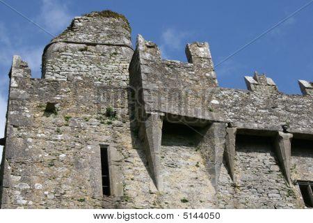 Fortification, Blarney Castle