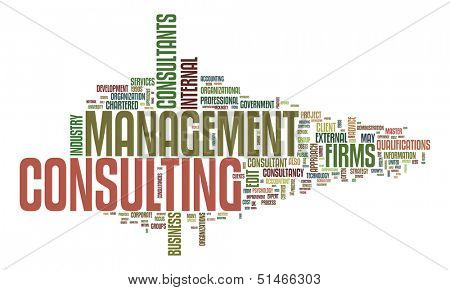 An image of a management consulting text cloud poster