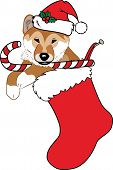 An illustration of a  Christmas stocking stuffed with a cute puppy wearing a Santa hat and holding a red and white candy cane. poster