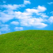 beautiful springtime landscape green grass blue sky nature scenic poster