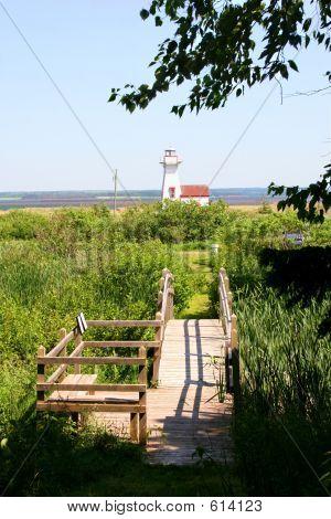Lighthouse & Bridge