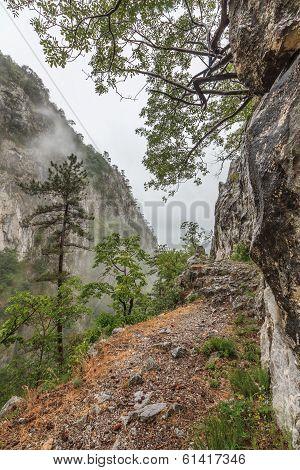 Tasnei Gorge protected area in Baile Herculane Romania. poster