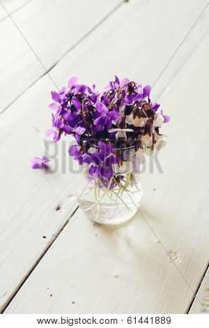 Beautiful Fresh Violets On White Table.