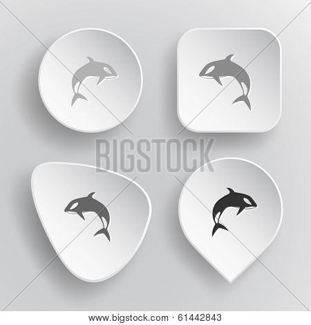 Killer whale. White flat raster buttons on gray background. poster