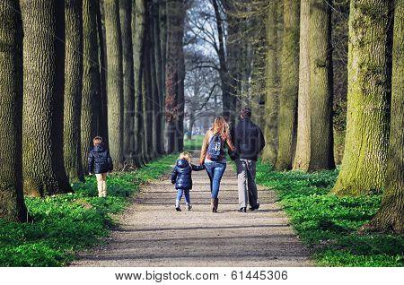 Garden Of De Haar Castle, Netherlands