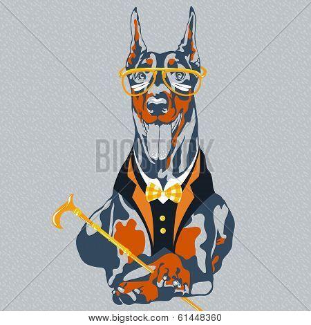 Vector Funny Cartoon Hipster Dog Doberman Pinscher Breed