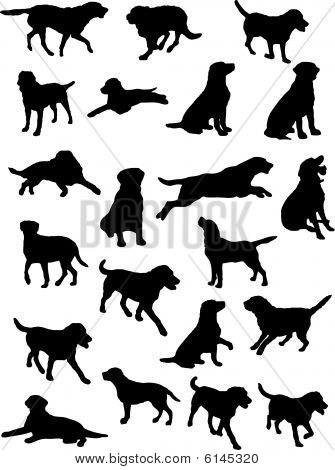 Labrador dog siluoettes