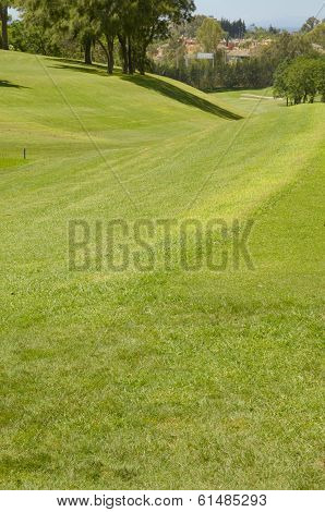 Slopping Fairway