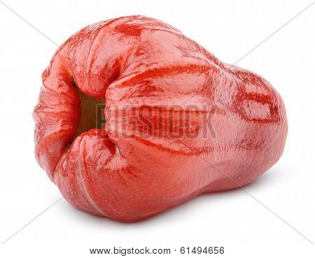 Rose Apple Or Chomphu Isolated On White