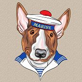 sailor dog BullTerrier breed in peakless cap and striped vest poster