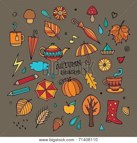Vector set of different autumn elements