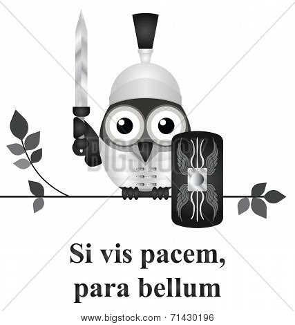 Monochrome Latin quotation Si vis pacem para bellum by Vegetius translated as if you want peace prepare for war isolated on white background poster