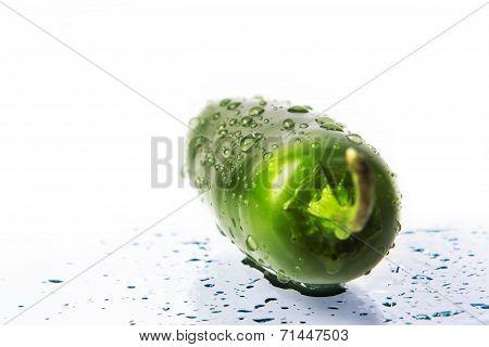wet green jalapeno hot pepper