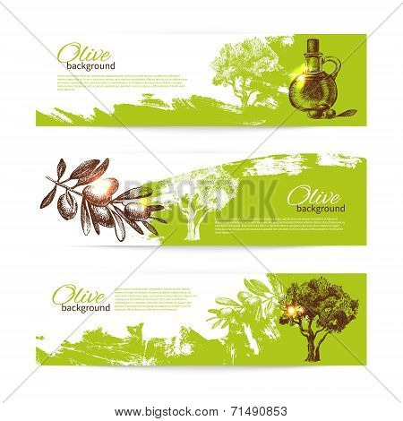 Banner set of vintage olive background splash backgrounds