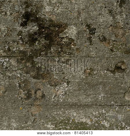 Old moldy concrete wall
