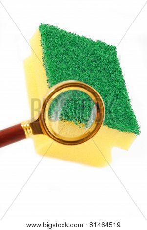kithen sponge and magnifying glass the concept of bacteria