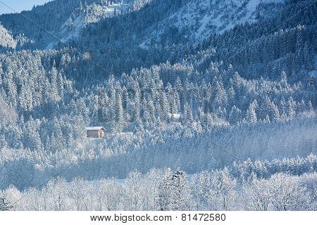 Alpine hut in wintery forest, Bavaria, Germany