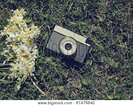 Vintage Old Camera And Flowers