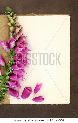 Foxglove flower border on a natural hemp notebook and brown paper background. Digitalis pupurea.
