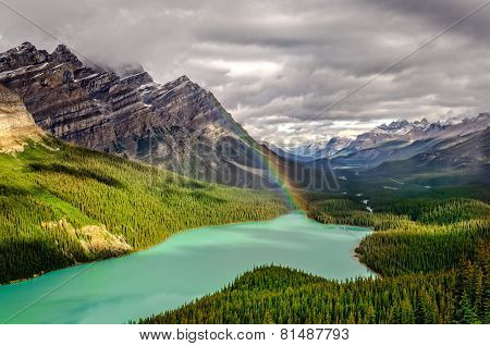 Scenic mountain view of Peyto lake valley Canadian Rockies Alberta Canada poster