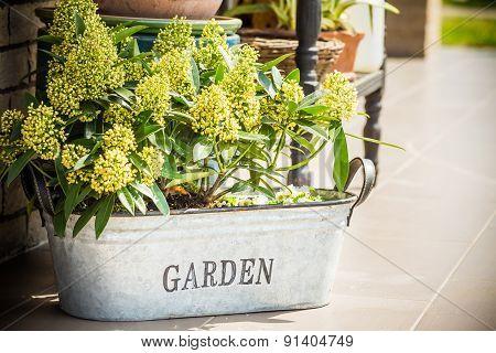 Decorative Ornamental Plant Pots In The Caption.