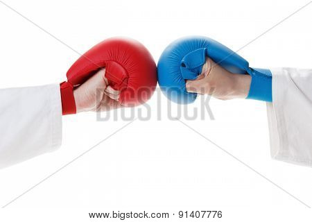 Karate sports glove and fist