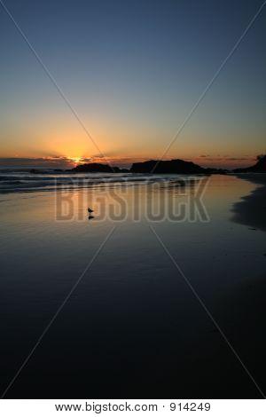Sunrise At Port Macquarrie Beach