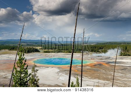 Landscape View Of Grand Prismatic Spring With Dry Trees In Yellowstone