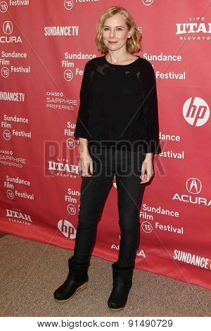 PARK CITY, UT-JAN 28: Actress Amy Ryan attends the
