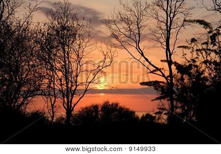 Landscape - Sunset Early Spring