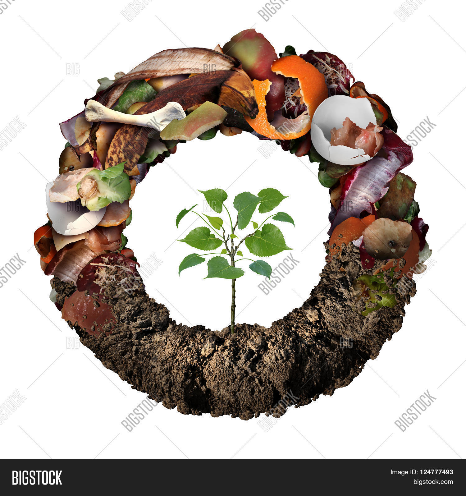 Compost life cycle symbol image photo bigstock for Soil life cycle