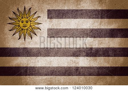flag of Uruguay or Uruguayan banner on rough pattern background