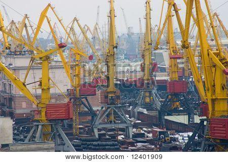 cranes in the seaport