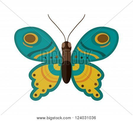 Flat butterfly vector. Flat butterfly isolated on white background. Flat butterfly vector illustration. Colored flat butterfly isolated on white background. Butterfly vector